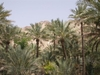 Silversea_wc_fujairah_inside_oasi_2