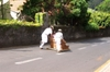 Silversea_wc_madeira_sled_ride_off_